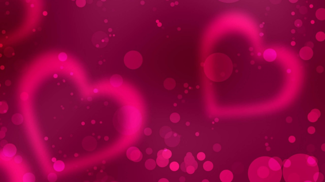 pink valentines day hd wallpaper
