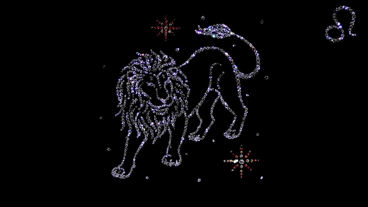 hd wallpaper lion zodiac hd