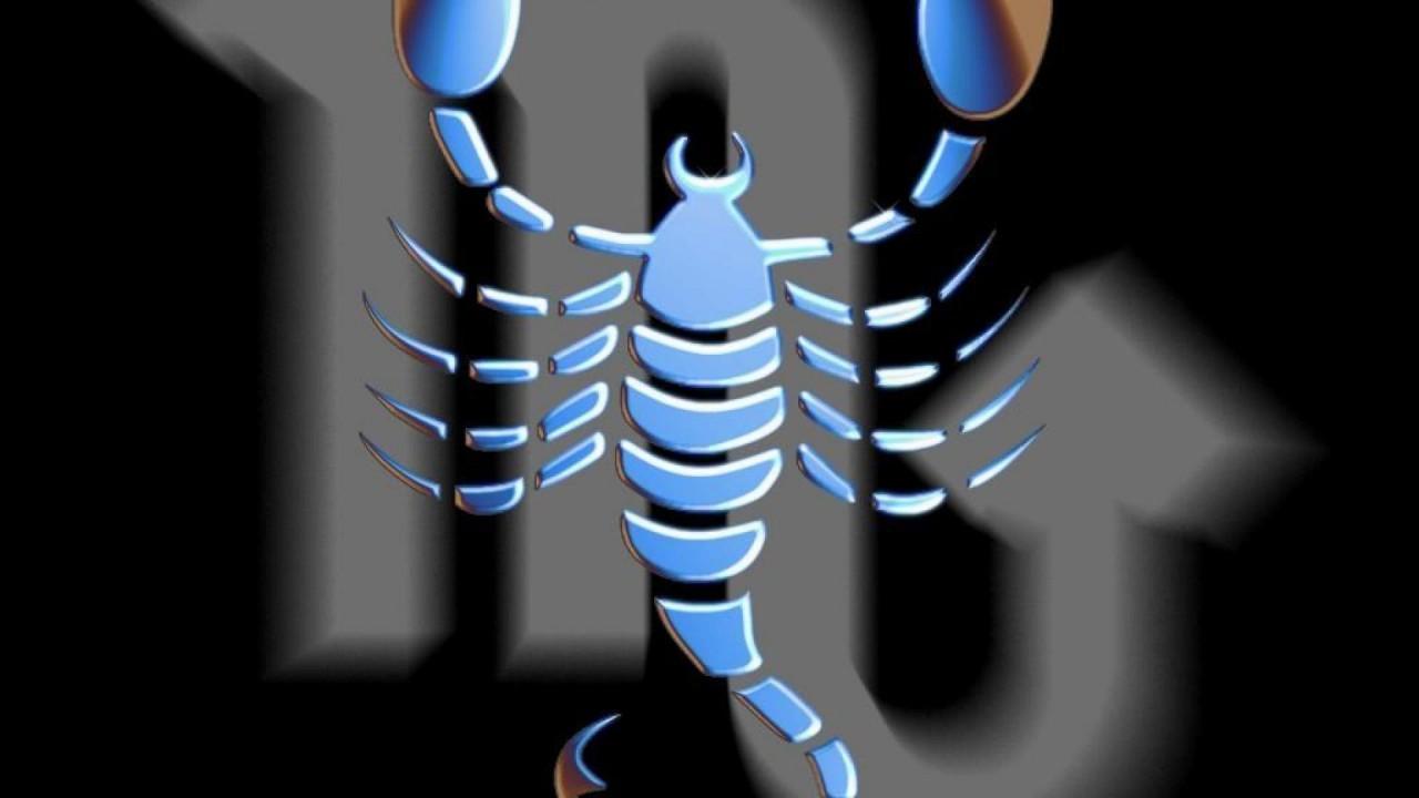 hd wallpaper scorpions
